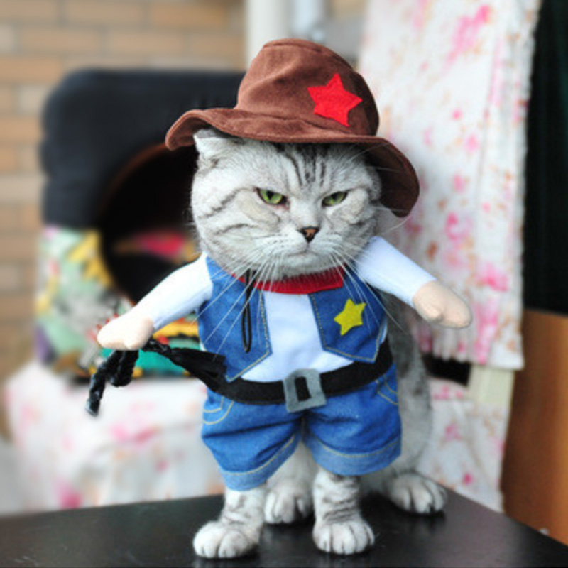 Funny-Cat-Clothes-Pirate-Suit-Clothes-For-Cat-Costume-Clothing-Corsair-Halloween-Clothes-Dressing-Up (7)