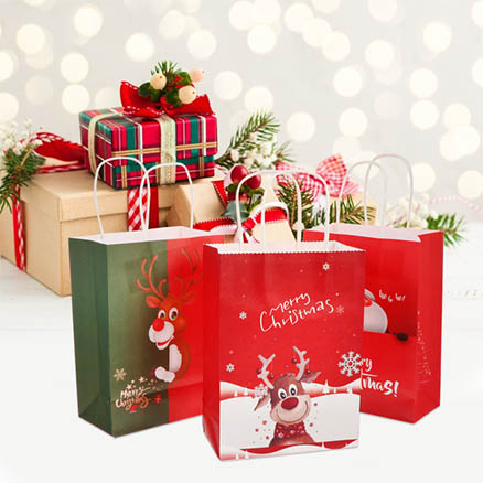 Christmas Paper Gift Bags5